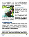 0000087225 Word Template - Page 4