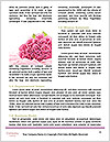 0000087227 Word Templates - Page 4