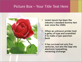 The flower PowerPoint Template - Slide 13