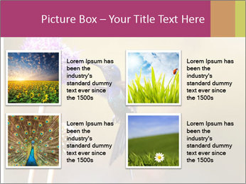 The flower PowerPoint Template - Slide 14