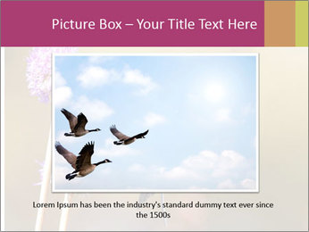 The flower PowerPoint Template - Slide 15