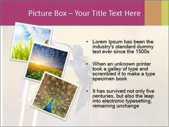 The flower PowerPoint Template - Slide 17