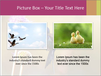 The flower PowerPoint Template - Slide 18