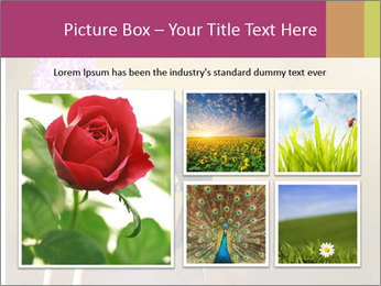 The flower PowerPoint Template - Slide 19