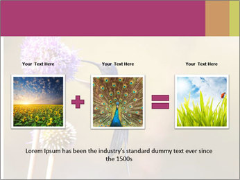 The flower PowerPoint Template - Slide 22