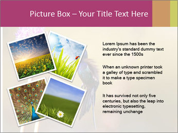 The flower PowerPoint Template - Slide 23