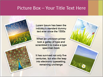 The flower PowerPoint Template - Slide 24