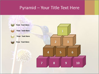 The flower PowerPoint Template - Slide 31
