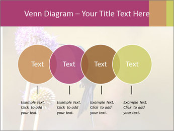 The flower PowerPoint Template - Slide 32