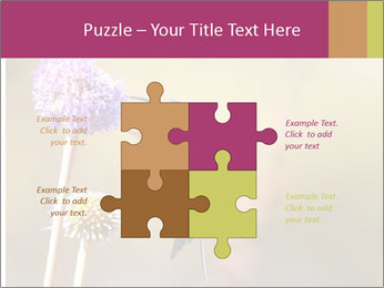 The flower PowerPoint Template - Slide 43