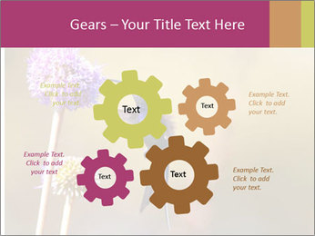 The flower PowerPoint Template - Slide 47