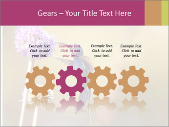 The flower PowerPoint Template - Slide 48