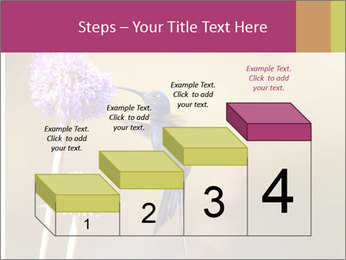 The flower PowerPoint Template - Slide 64