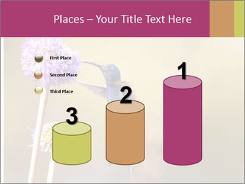 The flower PowerPoint Template - Slide 65