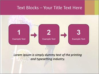 The flower PowerPoint Template - Slide 71