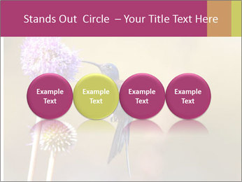 The flower PowerPoint Template - Slide 76
