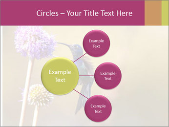 The flower PowerPoint Templates - Slide 79