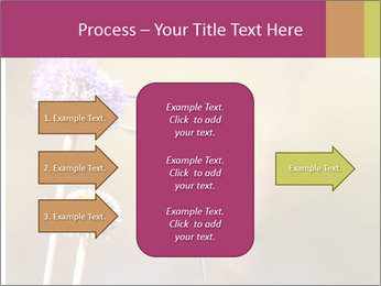 The flower PowerPoint Template - Slide 85