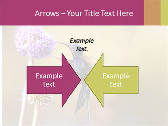 The flower PowerPoint Templates - Slide 90