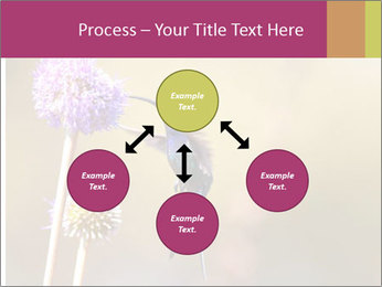 The flower PowerPoint Template - Slide 91