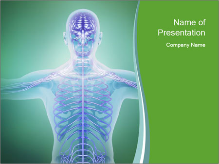 Human anatomy PowerPoint Template