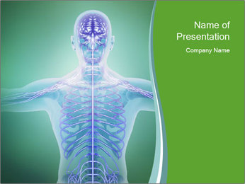 Human anatomy PowerPoint Template - Slide 1