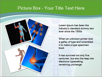 Human anatomy PowerPoint Template - Slide 23
