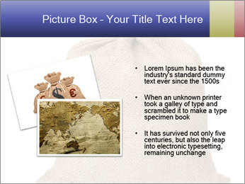 Bag PowerPoint Templates - Slide 20