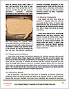 0000087244 Word Template - Page 4