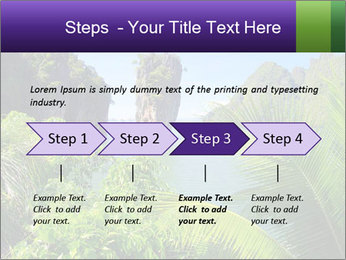 Island PowerPoint Templates - Slide 4