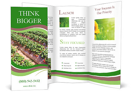 0000087248 Brochure Template