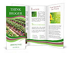 0000087248 Brochure Templates