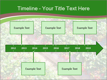 Strawberry field PowerPoint Template - Slide 28