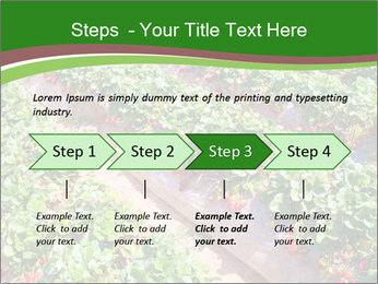 Strawberry field PowerPoint Template - Slide 4