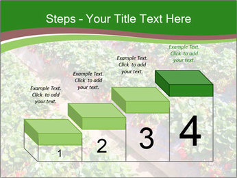Strawberry field PowerPoint Template - Slide 64