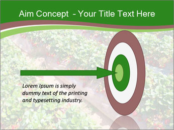 Strawberry field PowerPoint Template - Slide 83