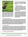 0000087248 Word Templates - Page 4
