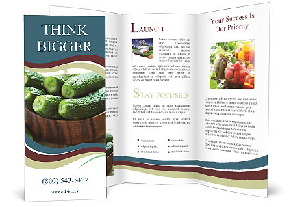 0000087258 Brochure Template