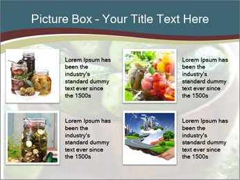 Fresh salted PowerPoint Templates - Slide 14