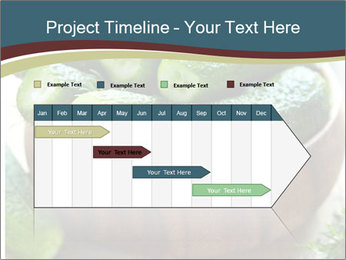Fresh salted PowerPoint Templates - Slide 25