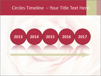 Wedding pink rose PowerPoint Templates - Slide 29