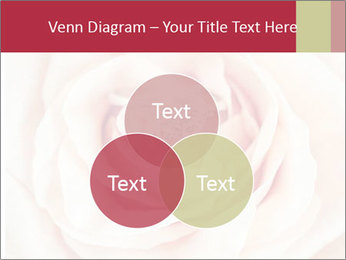 Wedding pink rose PowerPoint Templates - Slide 33