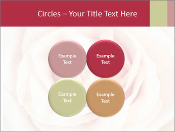 Wedding pink rose PowerPoint Templates - Slide 38