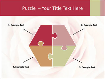 Wedding pink rose PowerPoint Templates - Slide 40