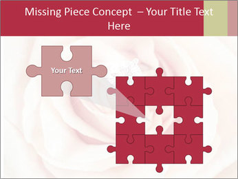 Wedding pink rose PowerPoint Templates - Slide 45