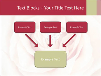 Wedding pink rose PowerPoint Templates - Slide 70