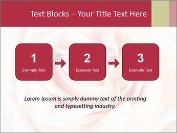 Wedding pink rose PowerPoint Template - Slide 71