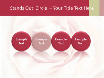 Wedding pink rose PowerPoint Templates - Slide 76