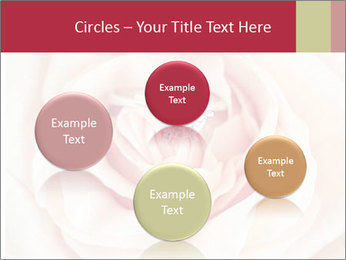 Wedding pink rose PowerPoint Template - Slide 77