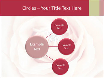 Wedding pink rose PowerPoint Templates - Slide 79